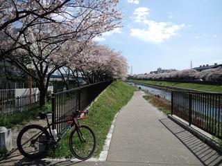 140405_kashio.JPG