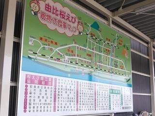 150520f_yui.JPG