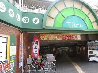 150829c_kanzaki.JPG