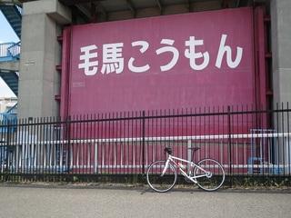 150829n_komon.JPG